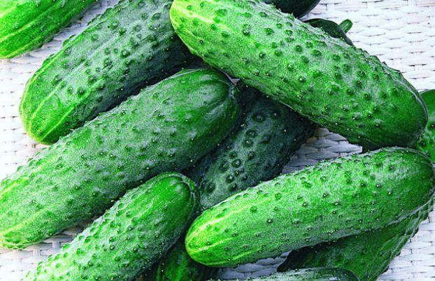 К Новому году цена на огурцы увеличится до 55 грн/кг