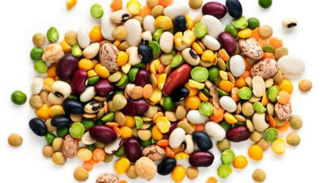 Украина испытывает острый дефицит семян нута и чечевицы