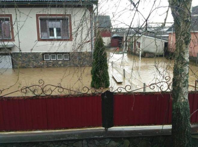 Паводок на Закарпатье: река прорвала дамбу, подтоплены десятки домов