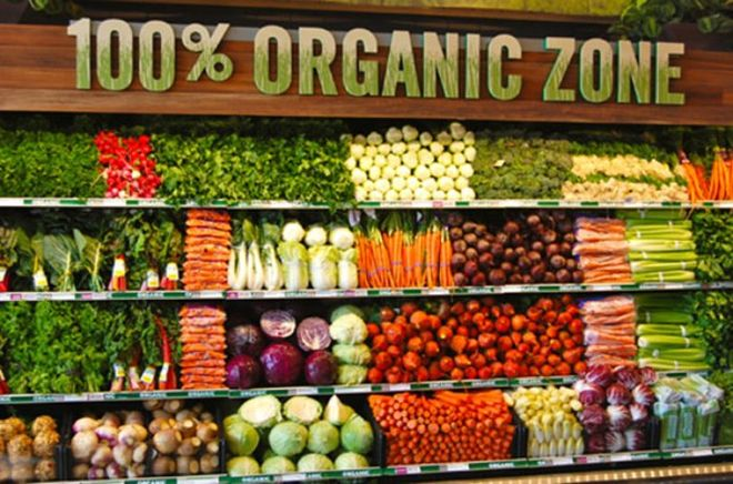 Датчане займутся развитием органического производства в Украине