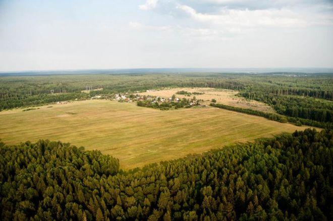 Депутаты отказались отменить продление моратория на продажу сельхозземель