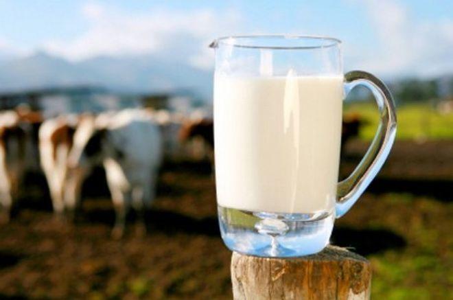 Украинский бизнесмен развеял главные мифы о молоке