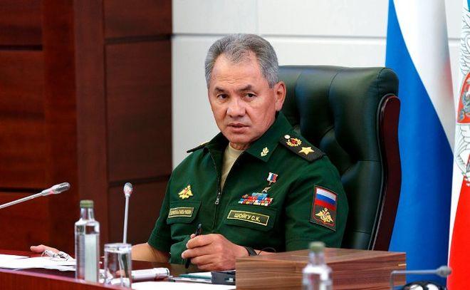 Министр обороны РФ назвал число уничтоженных террористов в Сирии