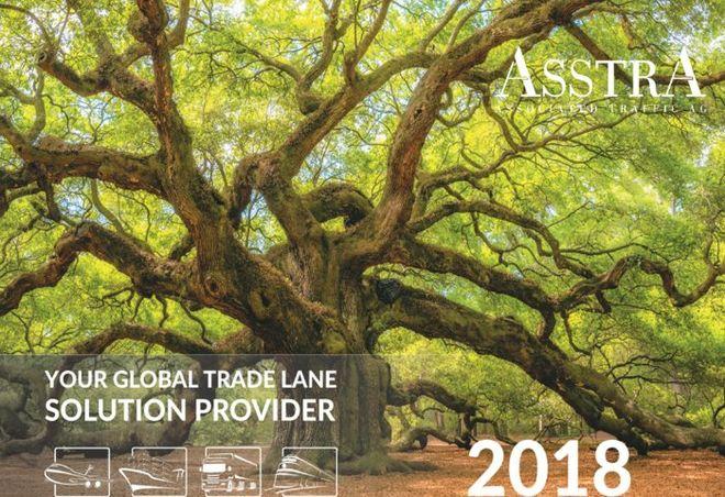 AsstrA представляет концепцию компании на 2018 год