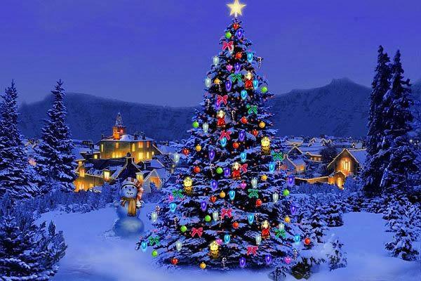 Названы самые необычные рождественские елки в мире