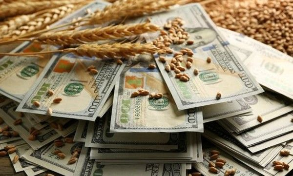 Украинскому бизнесу прокладывают дорогу на рынки Ганы и Нигерии
