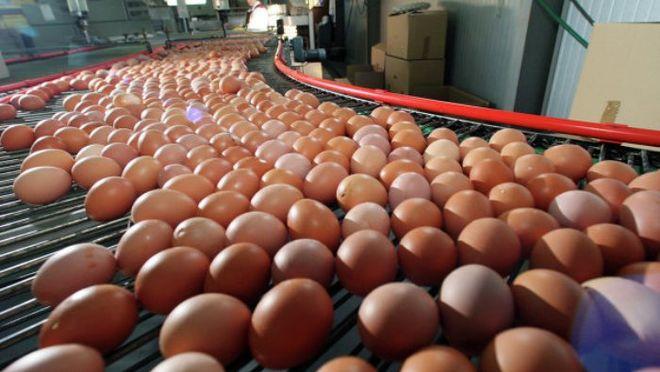 Весной пищевые предприятия могут проверять без предупреждений