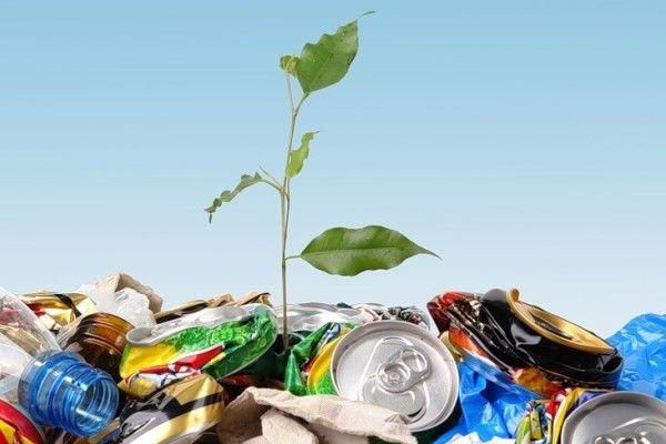 В Киеве организуют места для сбора опасных отходов