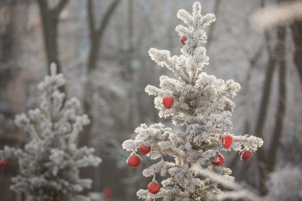 Мороз на улице заставил Украину сжигать в 2 раза больше газа