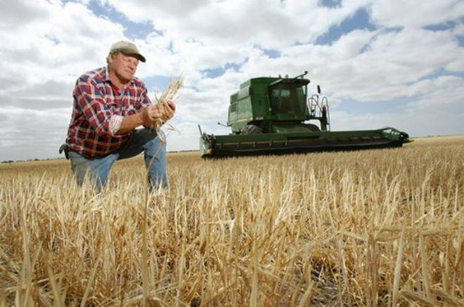 Чехия приглашает на работу больше украинских аграриев
