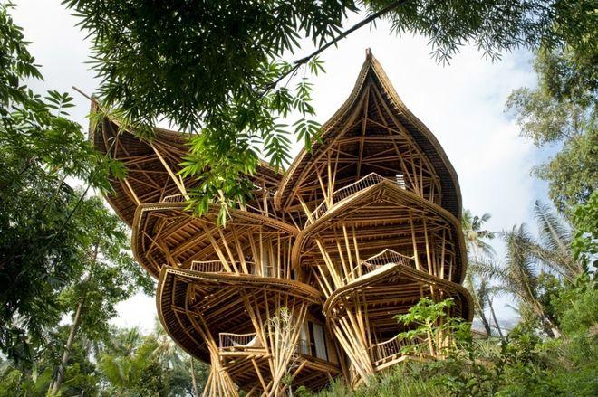 Американка бросила успешную карьеру и уехала на Бали творить строительную революцию