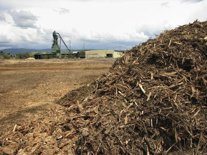 Украинские энергокомпании налаживают экспорт биомассы в Европу