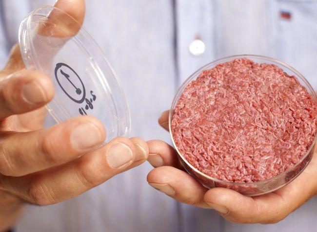 """Скотоводы США требуют дать более четкое определение понятию """"мясо"""""""