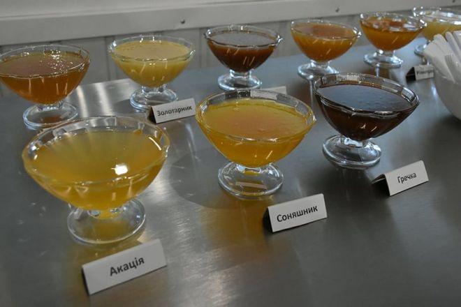 В Украине открыли завод по переработке меда на экспорт