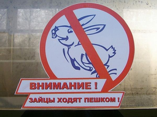 Киевпастранс и Укрзализныця ловят зайцев