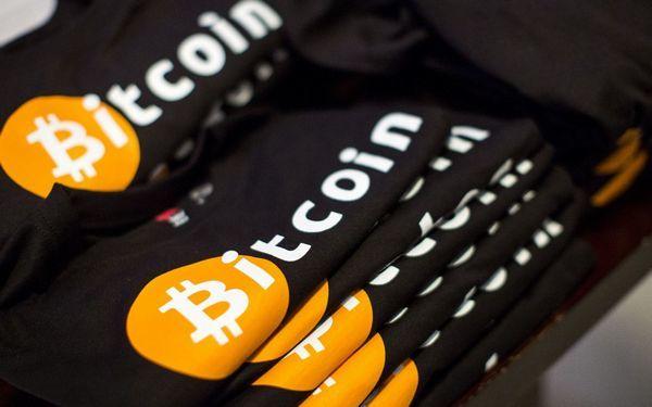 Кеннет Рогофф: «Регулирование приведет ктому, что биткоин подешевеет до $100»
