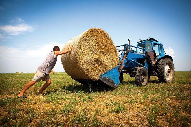 Всемирный банк назвал способ поднять экономику Украины