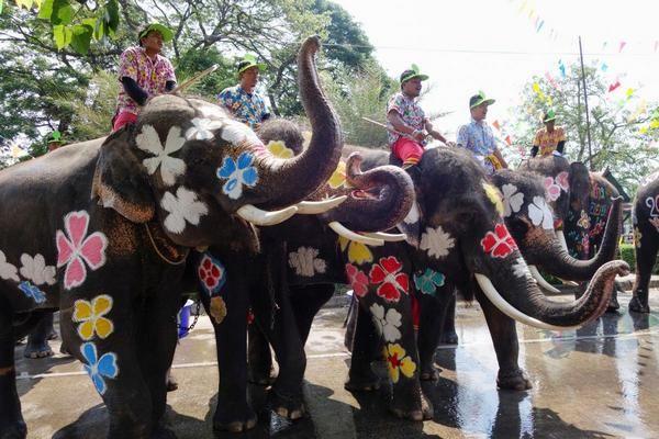 В Таиланде отметили фестиваль воды со слонами