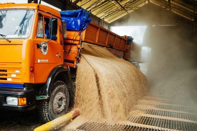 За 2 месяца украинский аграрный экспорт достиг почти $3 млрд