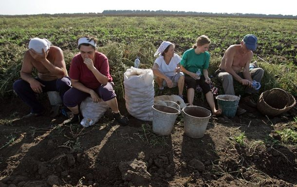 Землю крестьянам: Рада дала старт земельной миниреформе