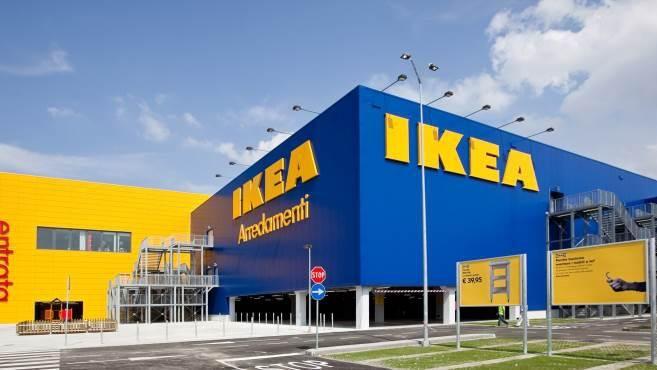 Украинская компания намерена стать логистическим оператором IKEA