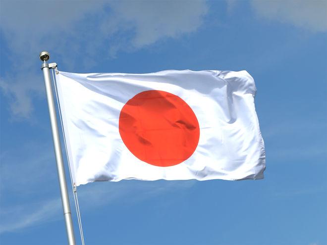 Япония предоставит Украине кредиты для производства электроэнергии из мусора