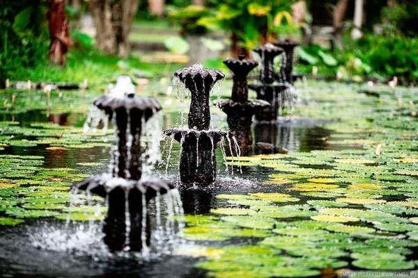 Водный дворец Тиртаганга: фотографы показали всю неповторимость архитектуры