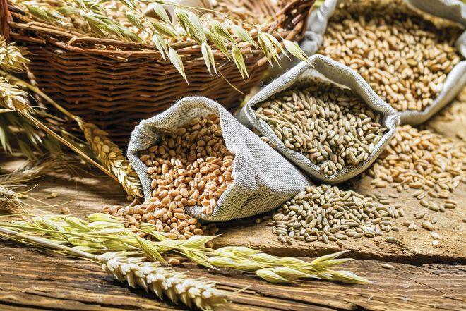 Украина резко сократила экспорт зерновых