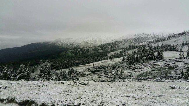 В Карпатах выпал снег посреди лета