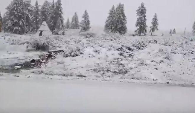 В РФ выпал снег