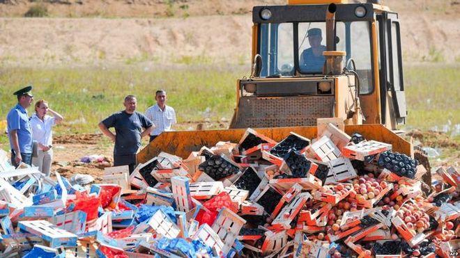 В России уничтожили 25 тысяч тонн санкционной еды