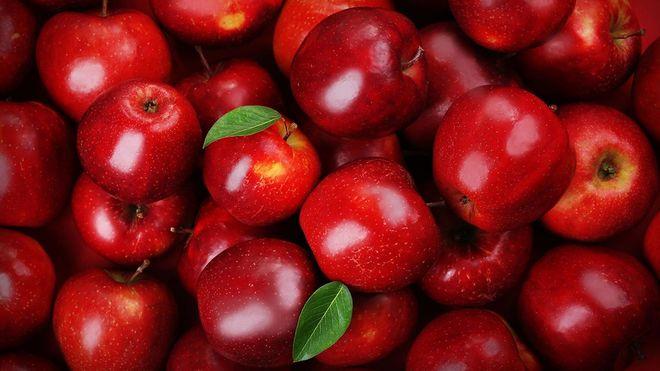 Украина экспортировала рекордное за 5 лет количество яблок