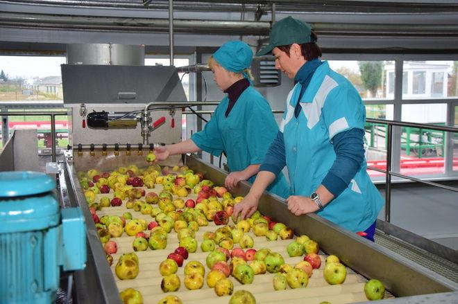 Украинская компания построит уже третий завод в Польше