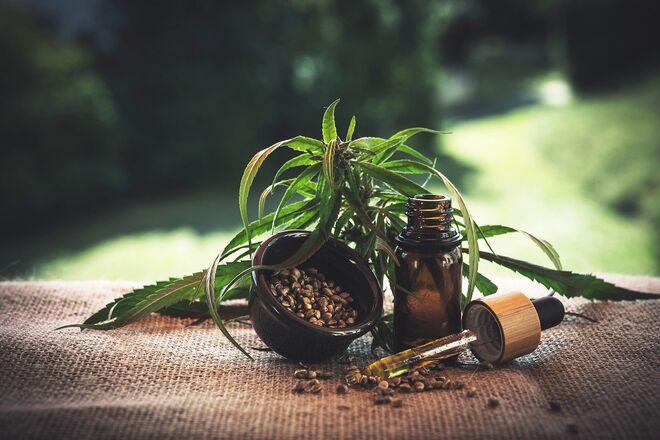 Кабмин легализовал марихуану в медицинских целях - фото